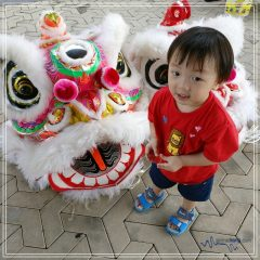 My Chinese New Year 2017